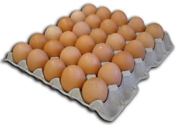 Productos for Bandejas para huevos